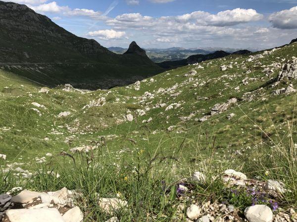 Wyprawa Montenegro 2017 - Dobrilovina, Žabljak, Trsa, Dobra Voda, Dobrota, Perast, Kotor, Ljesevici, Budva - zdjęcie 32