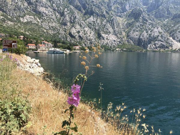 Wyprawa Montenegro 2017 - Dobrilovina, Žabljak, Trsa, Dobra Voda, Dobrota, Perast, Kotor, Ljesevici, Budva - zdjęcie 109