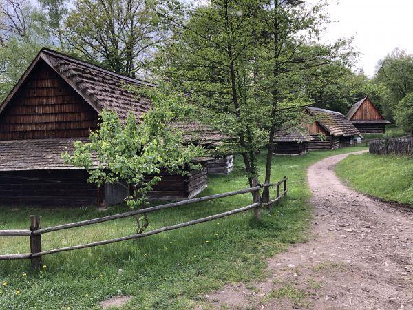 Wyprawa Bieszczady na weekend - Maj 2019 - zdjęcie 89