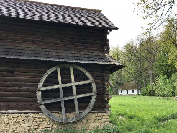Wyprawa Bieszczady na weekend - Maj 2019 - zdjęcie 92