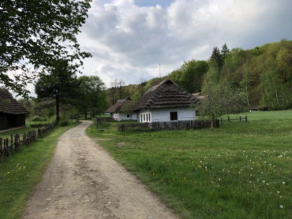 Wyprawa Bieszczady na weekend - Maj 2019 - zdjęcie 99