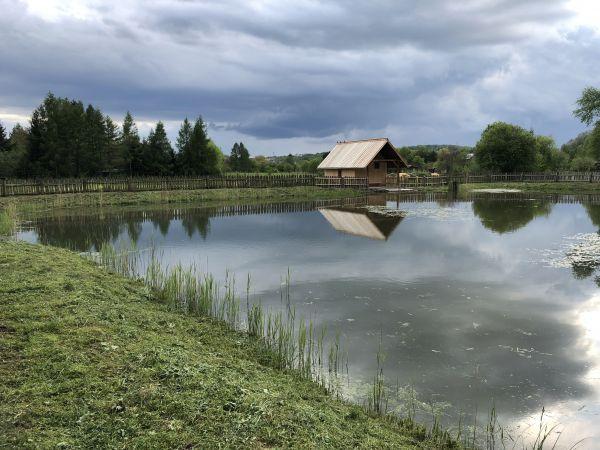 Wyprawa Bieszczady na weekend - Maj 2019 - zdjęcie 116
