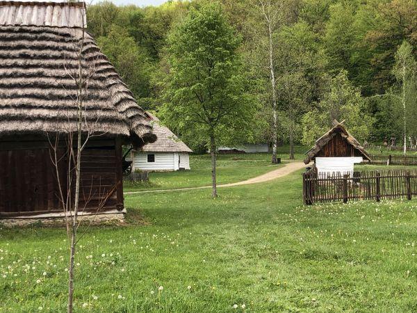 Wyprawa Bieszczady na weekend - Maj 2019 - zdjęcie 119