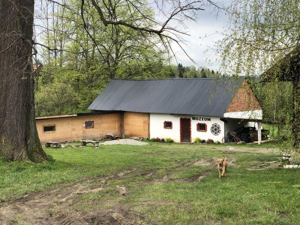 Wyprawa Bieszczady na weekend - Maj 2019 - zdjęcie 135