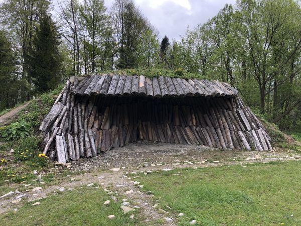 Wyprawa Bieszczady na weekend - Maj 2019 - zdjęcie 148