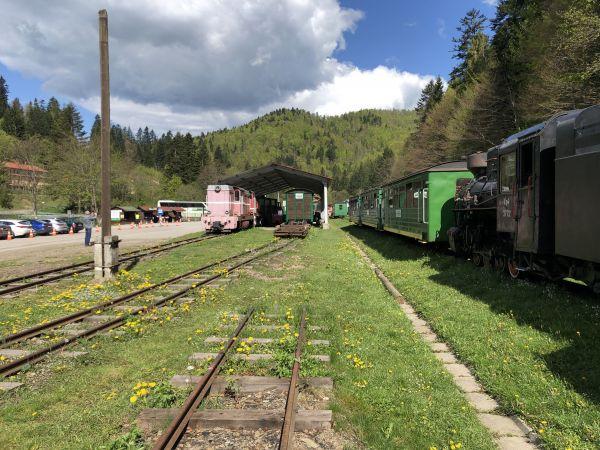 Wyprawa Bieszczady na weekend - Maj 2019 - zdjęcie 163