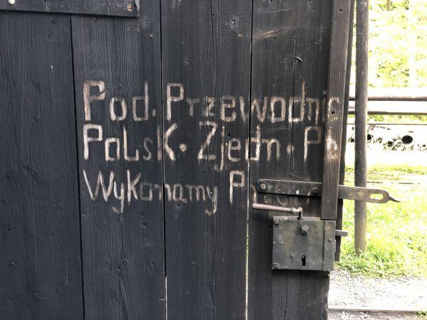 Wyprawa Bieszczady na weekend - Maj 2019 - zdjęcie 215