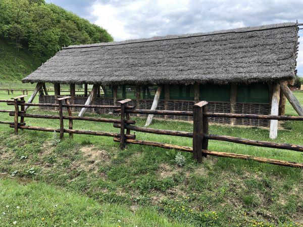 Wyprawa Bieszczady na weekend - Maj 2019 - zdjęcie 244