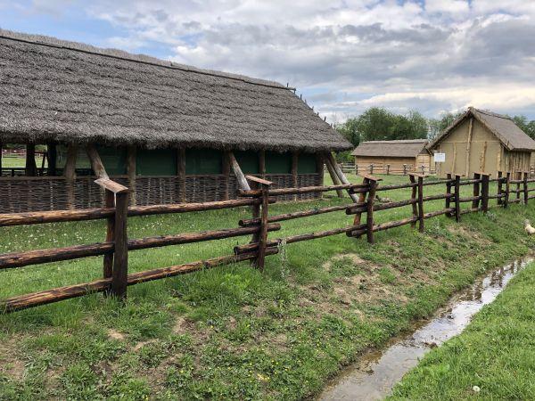 Wyprawa Bieszczady na weekend - Maj 2019 - zdjęcie 245