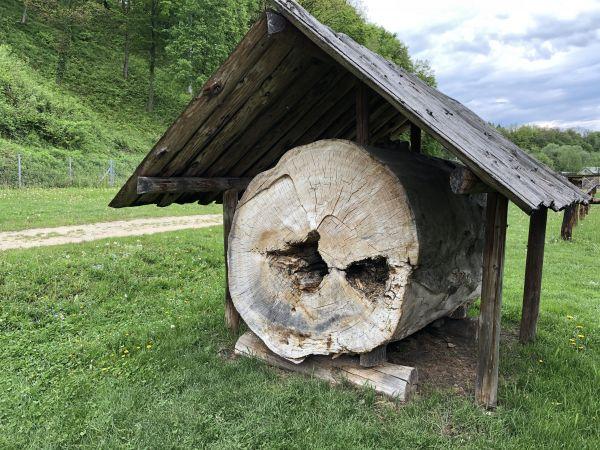 Wyprawa Bieszczady na weekend - Maj 2019 - zdjęcie 246