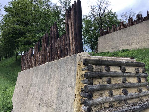 Wyprawa Bieszczady na weekend - Maj 2019 - zdjęcie 250