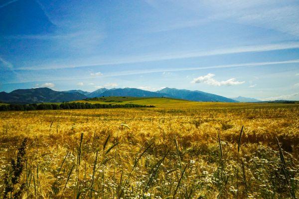 Wyprawa Słowacja na weekend - zdjęcie 12