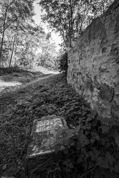 Wyprawa Wschowa, Żukowice, Bytom Odrzański, Siedlisko, Wolsztyn - zdjęcie 13