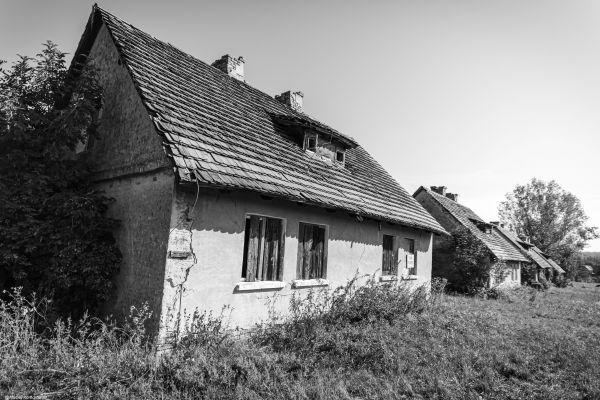 Wyprawa Wschowa, Żukowice, Bytom Odrzański, Siedlisko, Wolsztyn - zdjęcie 19