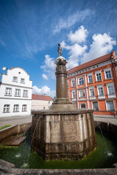 Wyprawa Wschowa, Żukowice, Bytom Odrzański, Siedlisko, Wolsztyn - zdjęcie 27